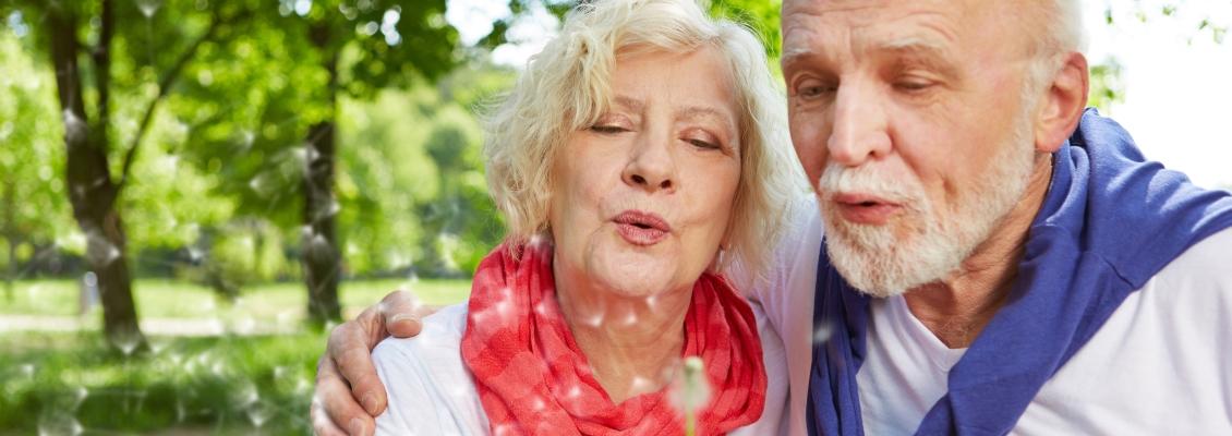 Paar Senioren pustet gemeinsam auf eine Pusteblume im Sommer